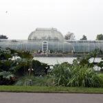 A Level Biology visit Kew Garden's