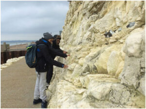 Examination of the geology of the cliffs