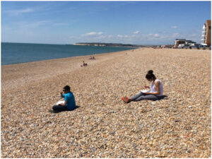 Students take observation notes on Seaford Beach.